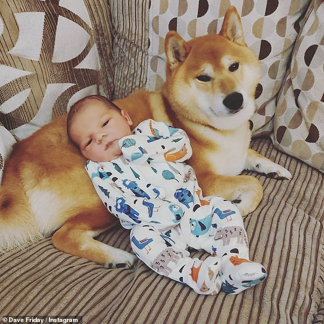 In good company: Baby Ronnie is pictured getting acquainted with the family dog in another post shared by Dave on Thursday evening