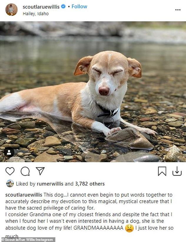 Has her heart: In late August, Scout posted a sweet snap to her Instagram of her rescue dog Grandma and alongside it, she gushed about what the pup means to her