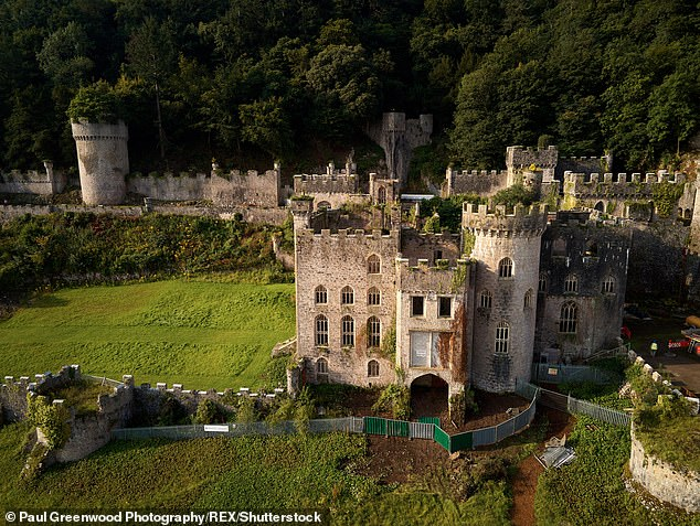 Challenge: The dance professional will take on gruelling challenges and be forced to endure freezing weather conditions at the ITV show's new location, Gwrych Castle in North Wales