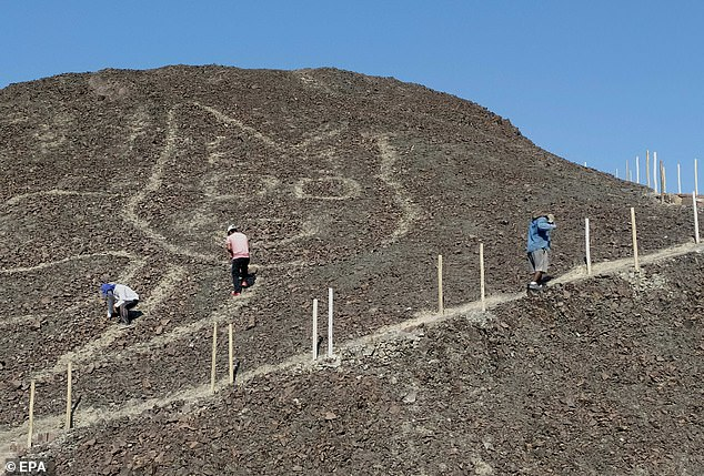 Archaeologists made the discovery while work was being carried out to maintain the path to a natural look-out point which allows visitors to see other Nazca line designs in the nearby area