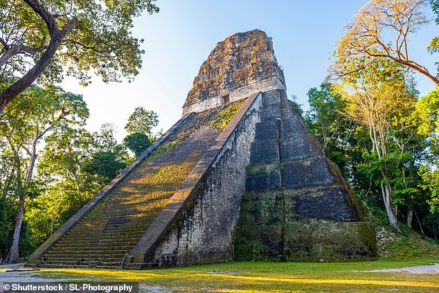 The ancient Maya people of Mesoamerica developed one of the world's oldest water purification systems — and it would still work today — a study has found. Pictured, the remains of temple in the Maya city of Tikal, in northern Guatemala