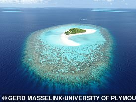 New research  claims that coral reef islands, such as the Maldives (pictured), could naturally adapt to survive surging water levels
