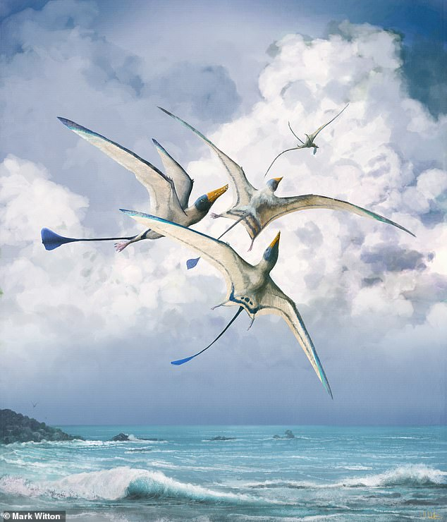 Winged reptiles like the pterodactyls andRhamphohynchus, pictured, may have ultimately become 'deadly masters of the sky' — but it took then 150 million years to reach this point