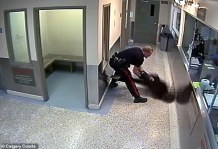 WATCH: Surveillance Footage Shows Canadian Police Officer Slamming Handcuffed Black Woman Face-First to the Floor Which Resulted in a Broken Nose as Fellow Officer Calls It the 'Worst Use of Force He Has Seen in 30 Years'