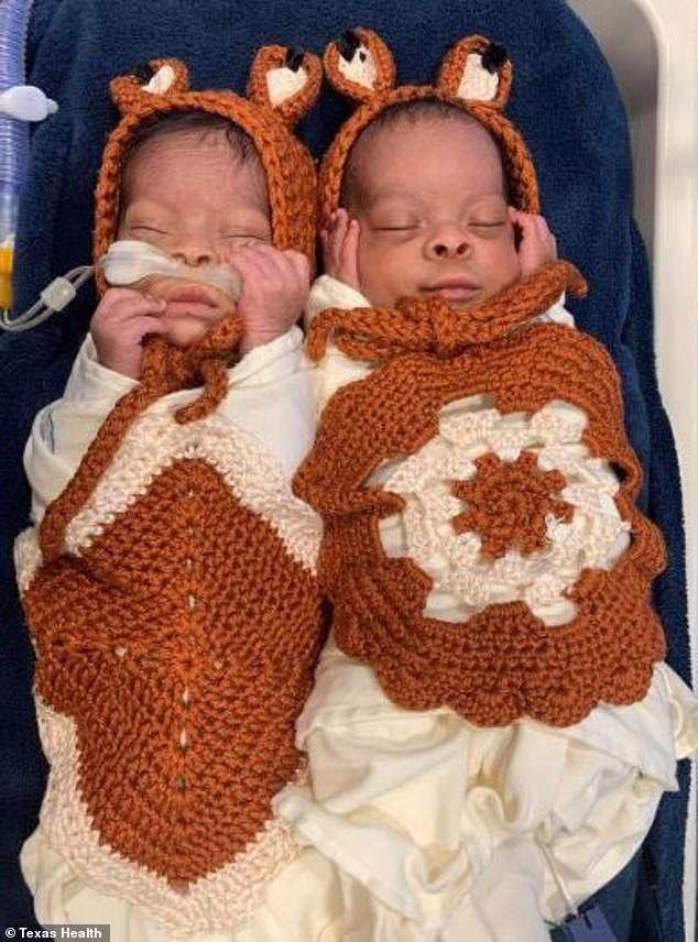 Matching: There was a pair of swaddled twin foxes wearing tiny caps with ears