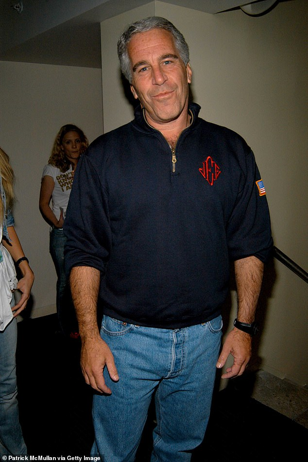 Leon Black and Jeffrey Epstein (pictured) are said to have met in 1996 and reportedly met up reguarly for dinners and lunches