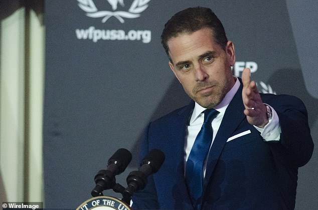 Hunter Biden, pictured in 2016, had a second laptop seized in February from a doctor's office
