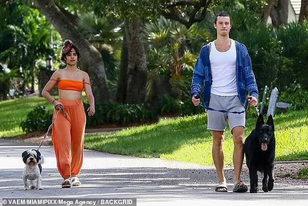 Dog days: Shawn Mendes and Camila Cabello had a bit of trouble when they took their dogs for a walk on Halloween this Saturday
