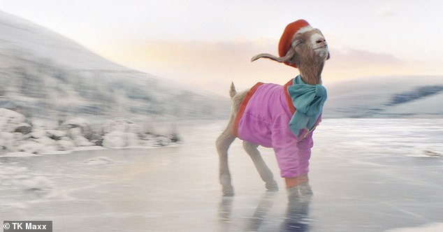 As the cheerful creature struts across the snowy landscape in the colourful outfit, the farmer says she 'blooming well deserves' the gift after 'a hard year', alluding to the Covid-19 crisis