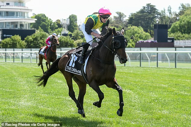 The Chosen One ridden by Daniel Stackhouse prior to the Lexus Melbourne Cup at Flemington Racecourse