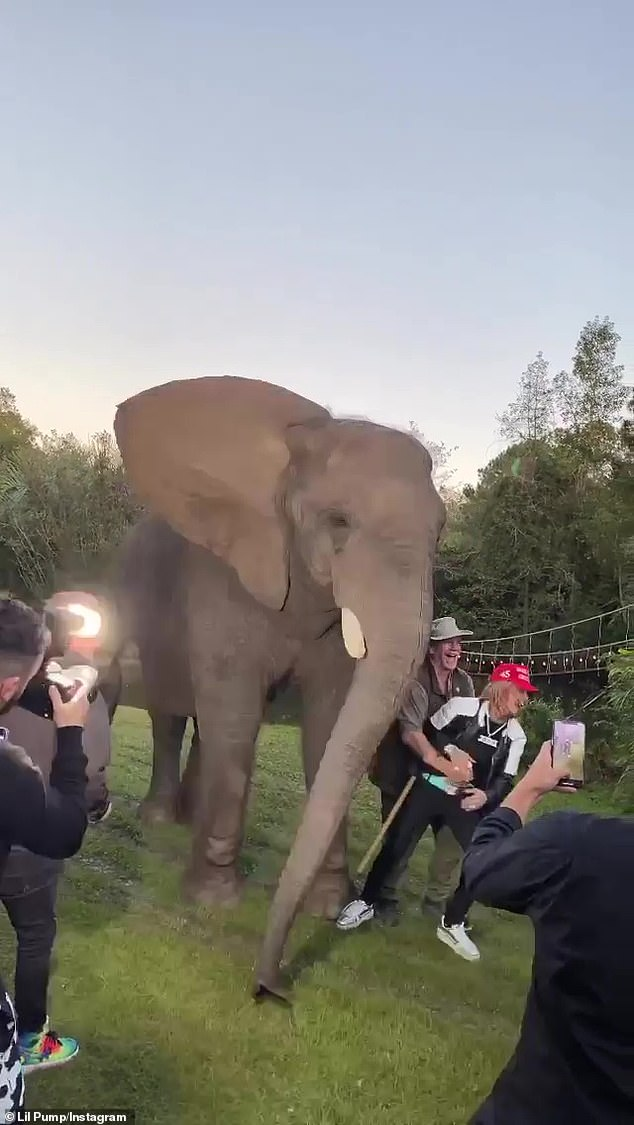 Nice catch! Fortuantely Doc caught Pump after he fell from the elephant