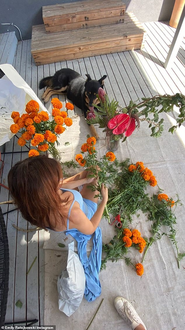 Content: She appeared to be having a relaxed afternoon, while creating eye-catching displays for her living room with her beloved Husky–German shepherd, Colombo, by her side