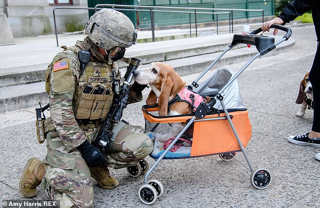 The calm before the potential storm was perhaps typified though by the sight of a soldier petting a dog outside of the Pennsylvania Convention Center