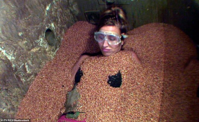 Tense:Ferne McCann left viewers gripped when she faced the Panic Pit trial, leaving even Ant and Dec shocked as she was wrapped in snakes while trapped in an underground chamber