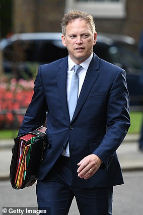 Transport Secretary Grant Shapps (file picture) told an aviation industry conference that work on a 'test and release' system for the border was making 'very good progress'