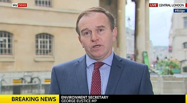 Environment Secretary George Eustice branded the maverick former chief aide a 'campaign' specialist who worked in 'short bursts' - casting doubt on his effectiveness at governing