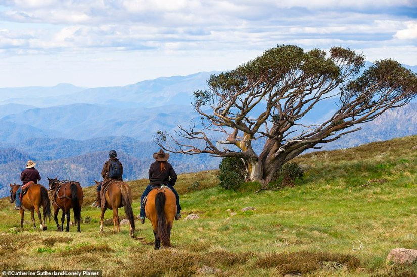 Best Restoration – Australia. 'Following the worst bushfire seasons in history, the rainforests, sapphire coasts and endemic wildlife are slowly rising from the ashes thanks to a number of community restoration efforts,' declares Lonely Planet