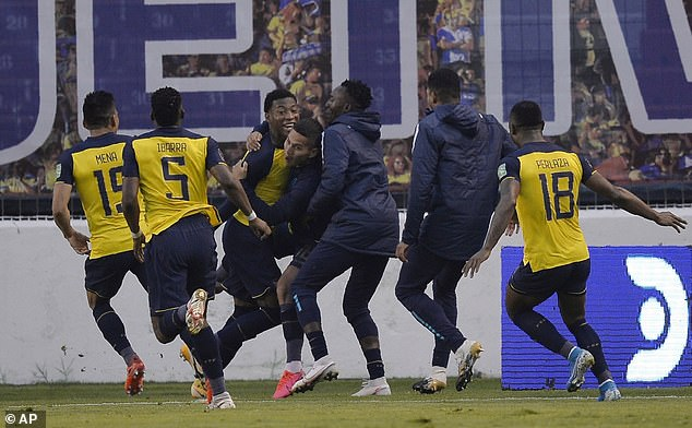 Ecuador have been the surprise package in the notoriously difficult World Cup qualifiers so far