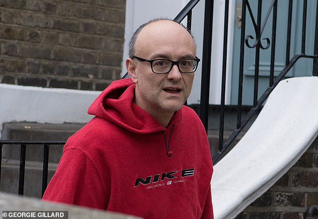 Johnson was accused in May of protecting Cummings (pictured) after it was revealed that the chief adviser had broken the lockdown