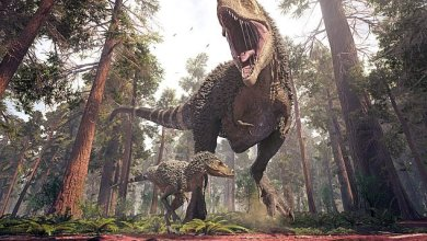 Fossils: 'Fat-footed' tyrannosaur parents could not keep up with their skinnier adolescent offspring
