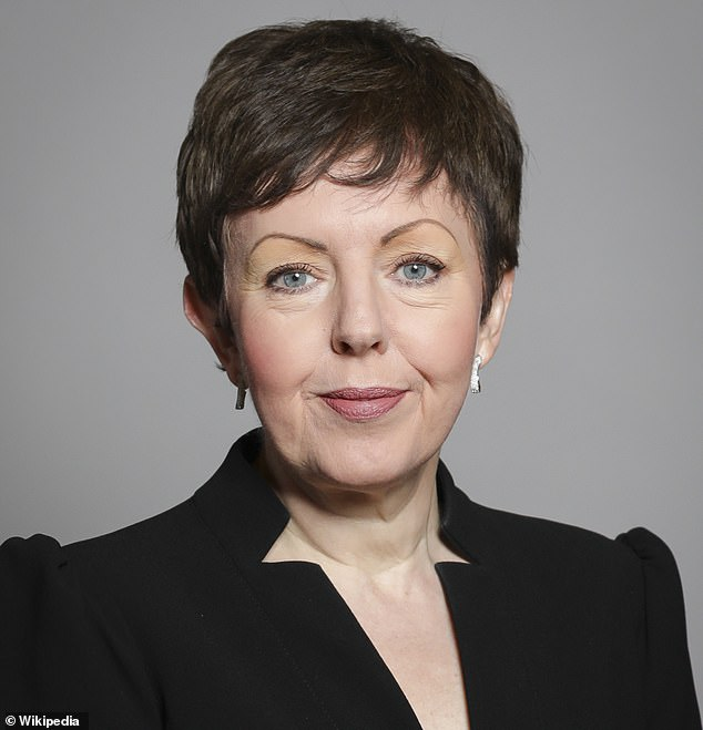 Charities such as the National Trust should avoid being dragged into culture wars about 'wokedom' because they risk damaging the entire sector, saidBaroness Stowell (pictured)