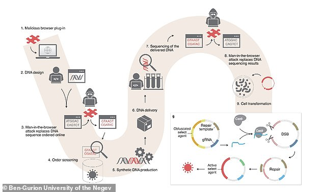 Researchersfound bioterrorists can infect an 'unwitting' biologist's computer with malware that replaces a short sub-string of the DNA in the code with a new sequence