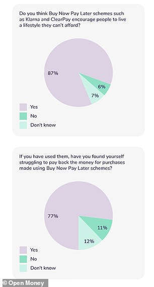 Research from digital financial advice service Open Money found some consumers had struggled with 'buy now, pay later' schemes