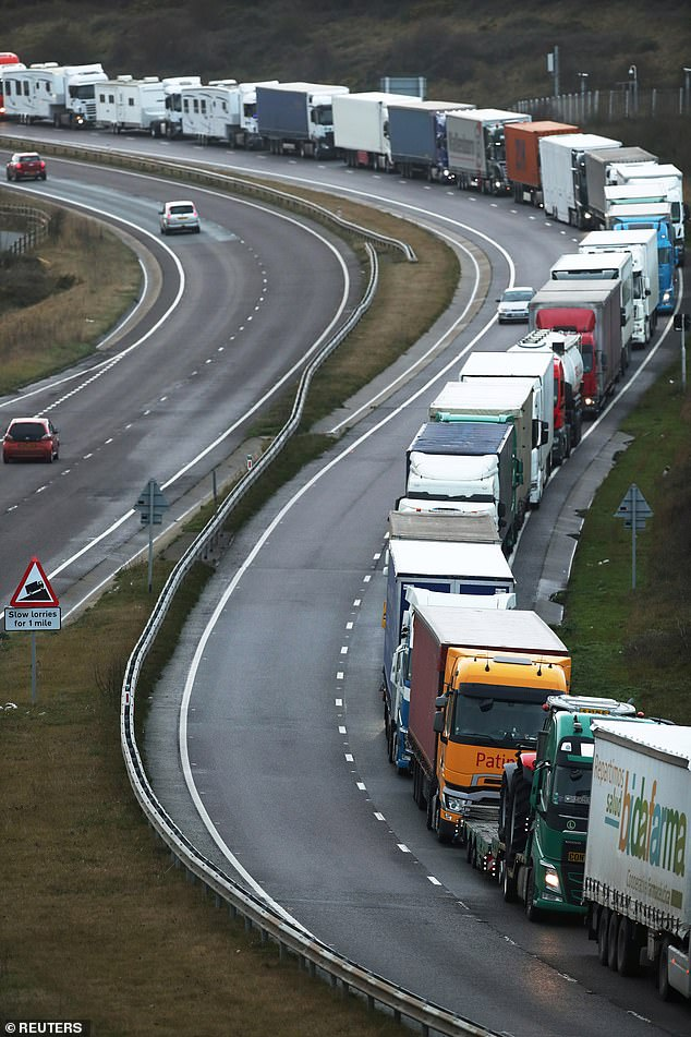 They will see it as another nail in the coffin of Western democracy.  So the penalty for failing Brexit negotiations is far greater than the cost of British lamb tariffs or the inconvenience of long lines in Dover (pictured on December 11)