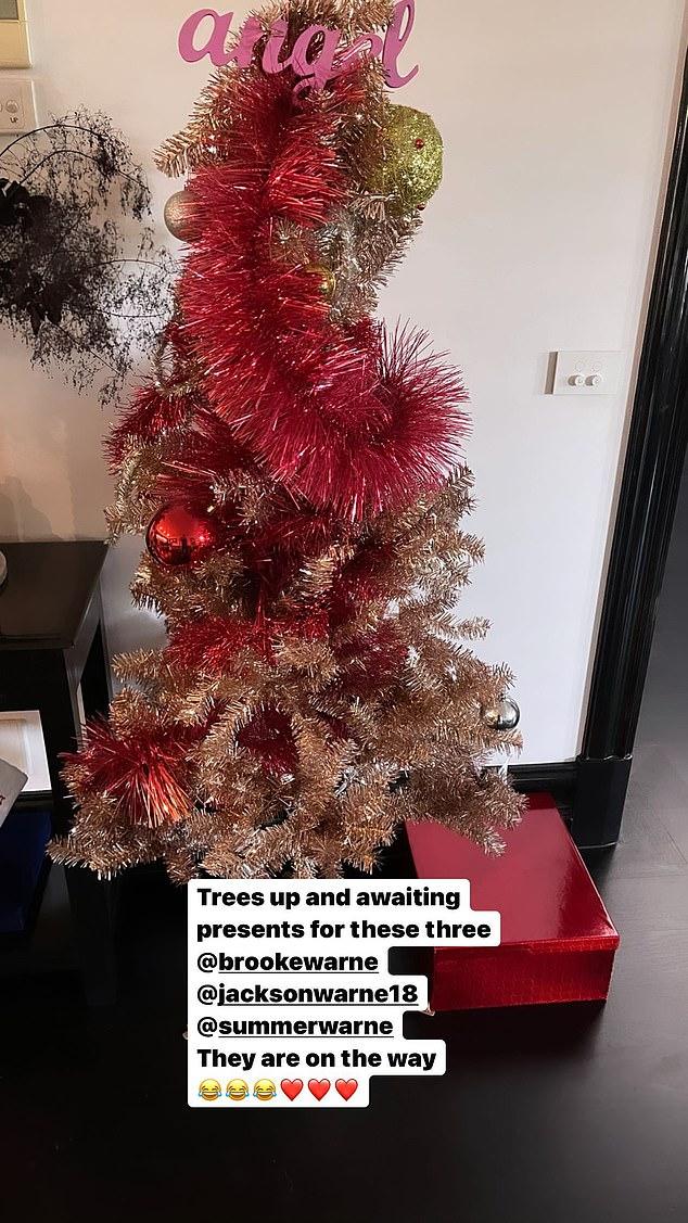Shane Warne debuts his Christmas tree