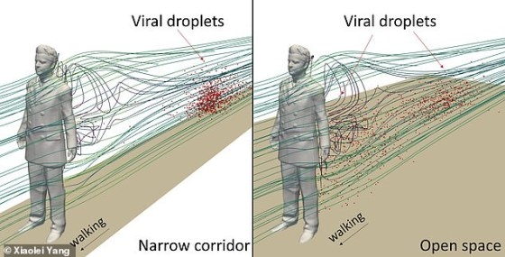 Image left: the detached regimen created in a narrow corridor that sees a highly concentrated mass of disrupted coronavirus particles several feet behind an individual.  Right: the same person walking at the same speed but in an open corridor.  It shows