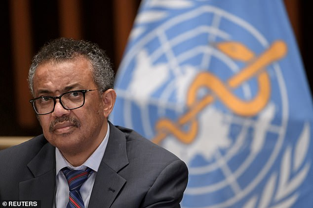 Pictured: Tedros Adhanom Ghebreyesus, Director General of the World Health Organization (WHO).  Health ministers called on the WHO in May to identify the source of the virus and how it crossed the species barrier