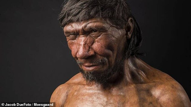 Researchers published their findings in the journal L'Anthropologie. Pictured: A Neanderthal man