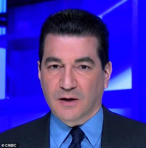 Scott Gottlieb, a former head of the FDA, told CNBC that the new strain 'is already in the US' and that a travel ban would not keep it out