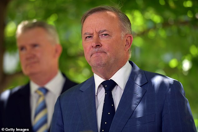 Anthony Albanese said coronavirus vaccines should be rolled out earlier than March if approved by authorities