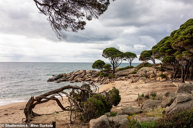 West of Bunker Bay in Western Australia (pictured), locals claim two ghosts haunt nearby cottages closeby