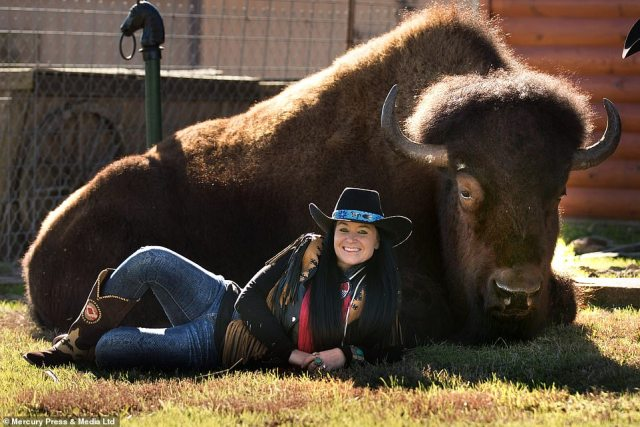 Sherron decided to bring the huge animal into the home 15 years ago after selling their herd of 52 buffalo