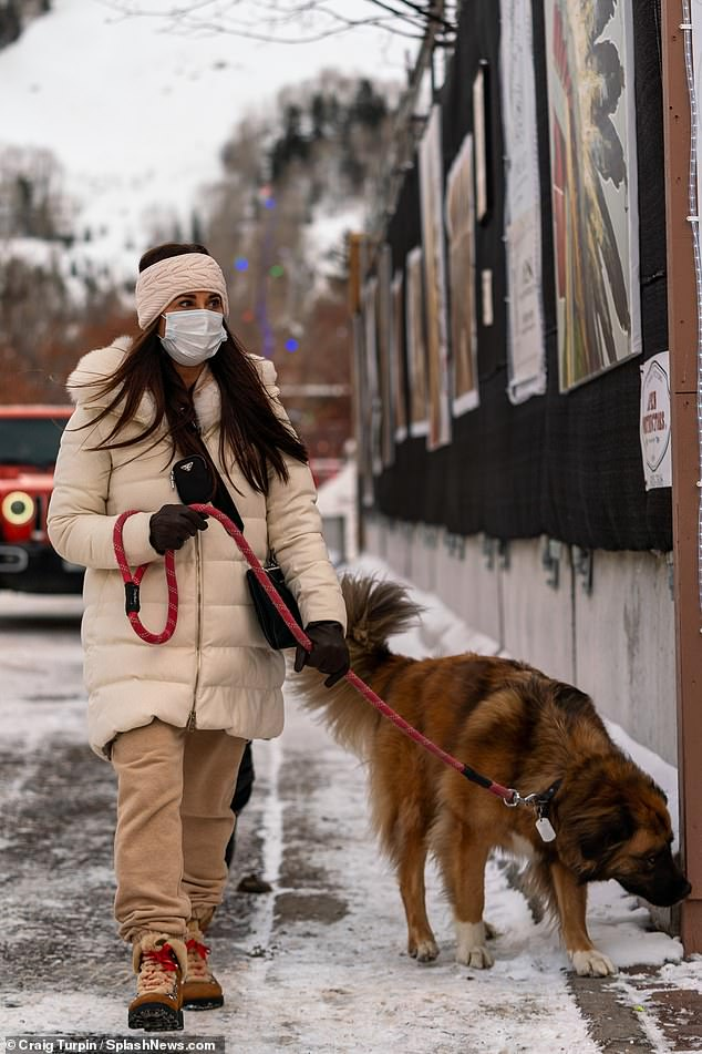 Fresh and about: The cute pup appeared to enjoy the snow