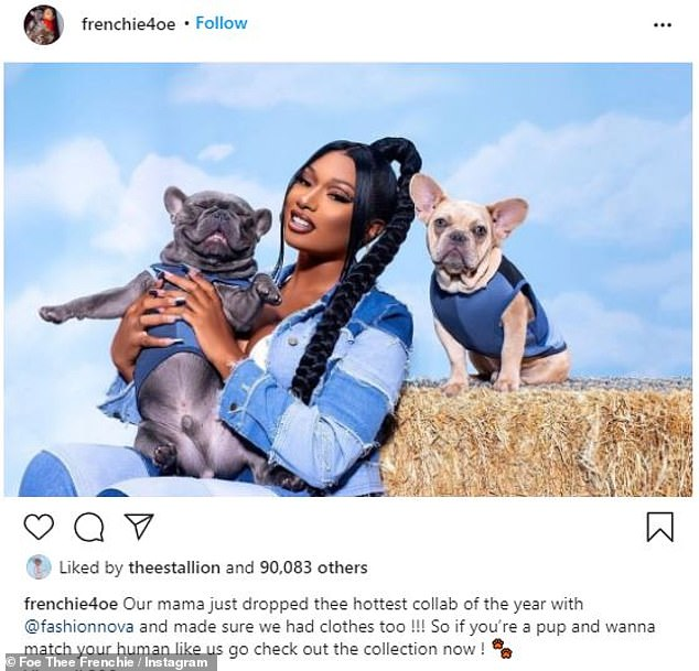 Frequent appearances:This is not the first time Megan's dogs have appeared in her Fashion Nova promotional images; Megan pictured in November