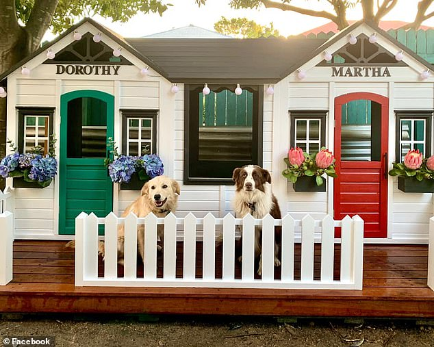 Earlier this year, 'devoted dog mum' transformed two Kmart cubby homes into an epic outdoor shelter for her beloved pets (pictured)