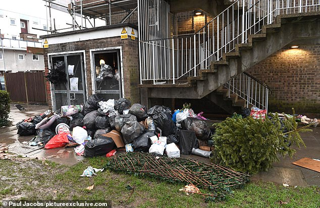 A Christmas tree was among this rubbish dumped near flats in Buckland area of Portsmouth