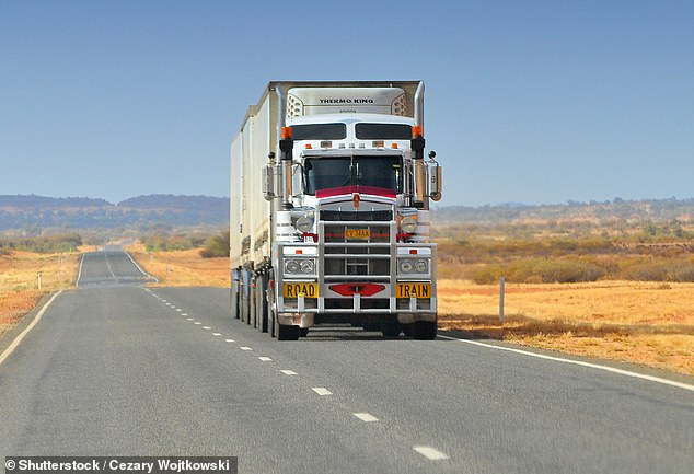 A woman, 44, and boy, 17, have died after their ute collided with a road train in North West Queensland on Monday morning (stock image)