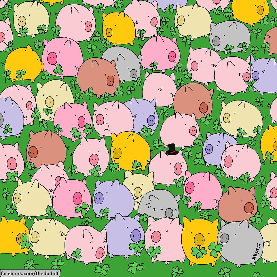 Can YOU find the single four-leaf clover?