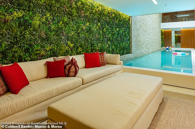 Close quarters: The home features a slim indoor pool that runs right up to a living area