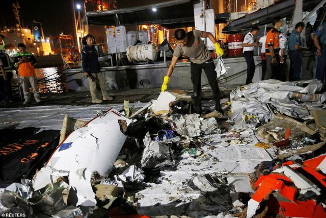 The crash (wreckage pictured) left all 189 people onboard dead and has been blamed on a combination of aircraft design flaws, inadequate training and maintenance problems