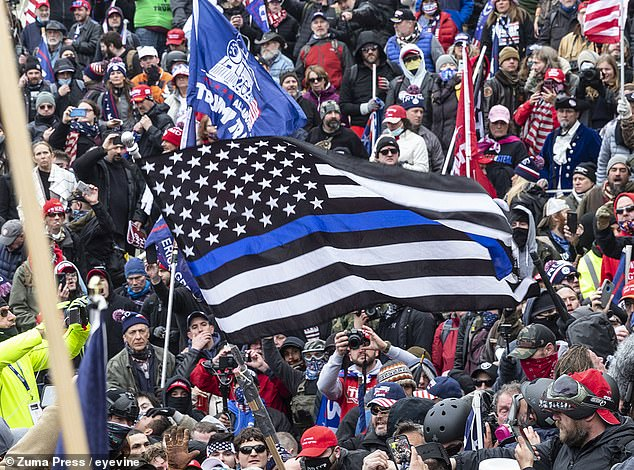 A Thin Blue Line flag held by a member of the crowd in Wednesday's riot