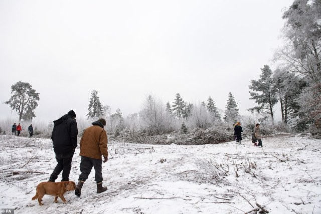 Meteorologists have confirmed that a sudden stratospheric warming (SSW) event is developing high above the Arctic, the same phenomenon which caused the country to grind to a halt two years ago. Pictured: People walking through snow and icy conditions at Lickey Hills Country Park in Birmingham