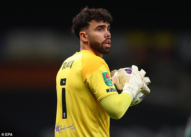 Brentford shot stopper David Raya was Arsenal's first-choice target in the summer window