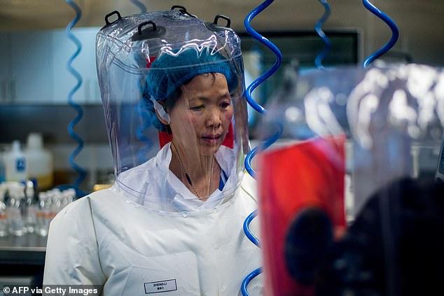 Virologist Shi Zhengli inside the P4 laboratory in Wuhan, capital of China's Hubei province