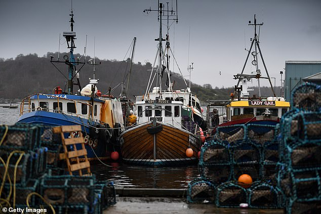 Some Scottish fishing businesses will be compensated because of hold-ups in the wake of the Brexit deal after exporters have been hit with a 'perfect storm' of problems since New Year