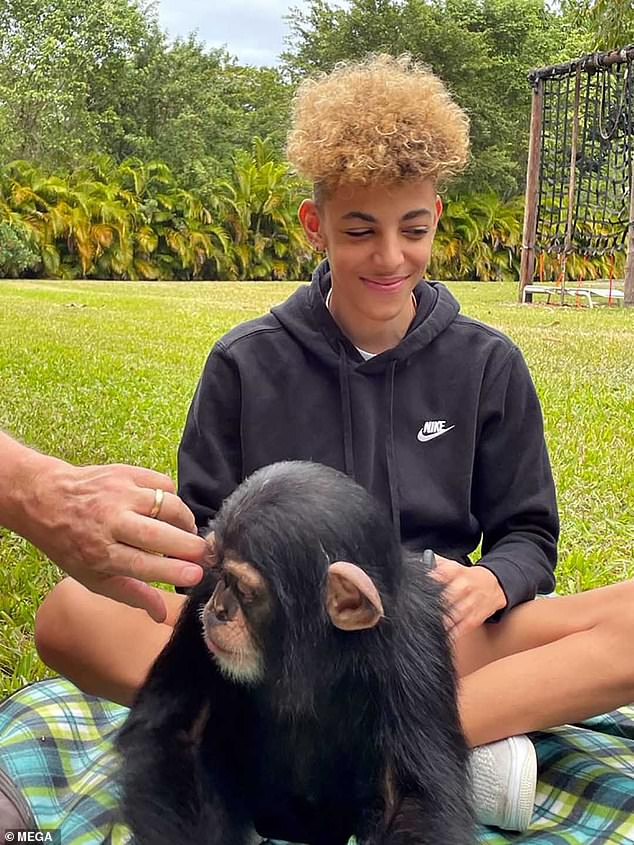 Cleaning up:He sat on a picnic blanket and mimicked grooming one of the chimps from behind while seated cross-legged